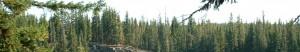 cropped-Cliff-Lake1.jpg